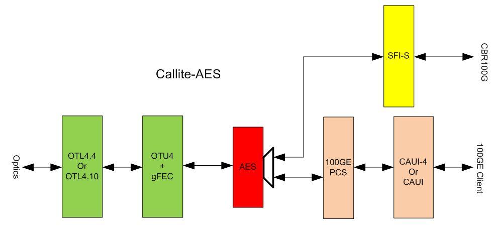 Callite   100ge  Otn Transponder  With Aes